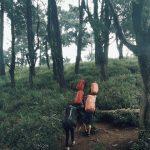 Pendakian ke Gunung Prau via @anggaaaaar